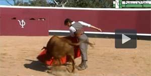 Vuelve el toreo al Arnedo Arena